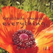 """""""Gratitude"""" by Jiwan Shakti Kaur"""