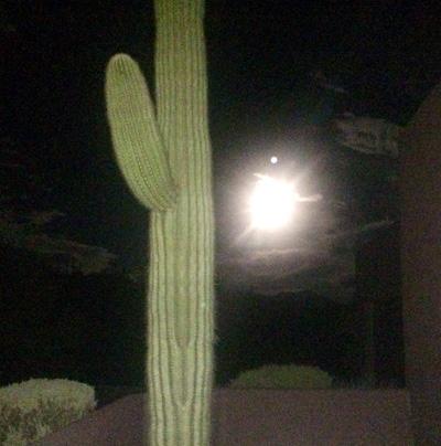full-moon-desert