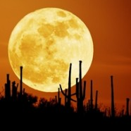Full Moon Meditation Class Sunday August 10th
