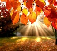 """Fall"" in love with Kundalini Yoga"